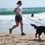 3 Free Activities You Can Do With Your Dog
