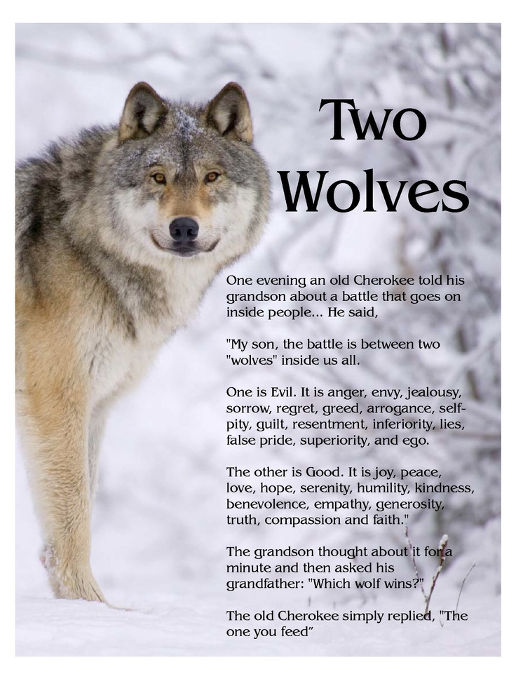 Two Wolves within