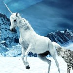 unicorn energy healing reiki