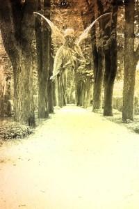 Light of Archangels Empowerment