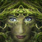Mystic Eye of the Seer Reiki