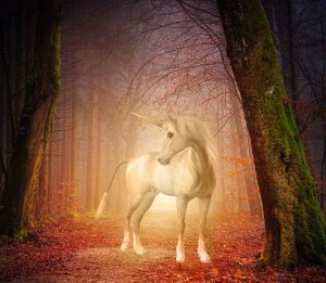 Magick of the Unicorn Empowerment Reiki
