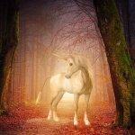 Magick of the Unicorn Empowerment Reiki