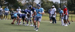 Rice Owls go through their paces at training in Sydney Australia