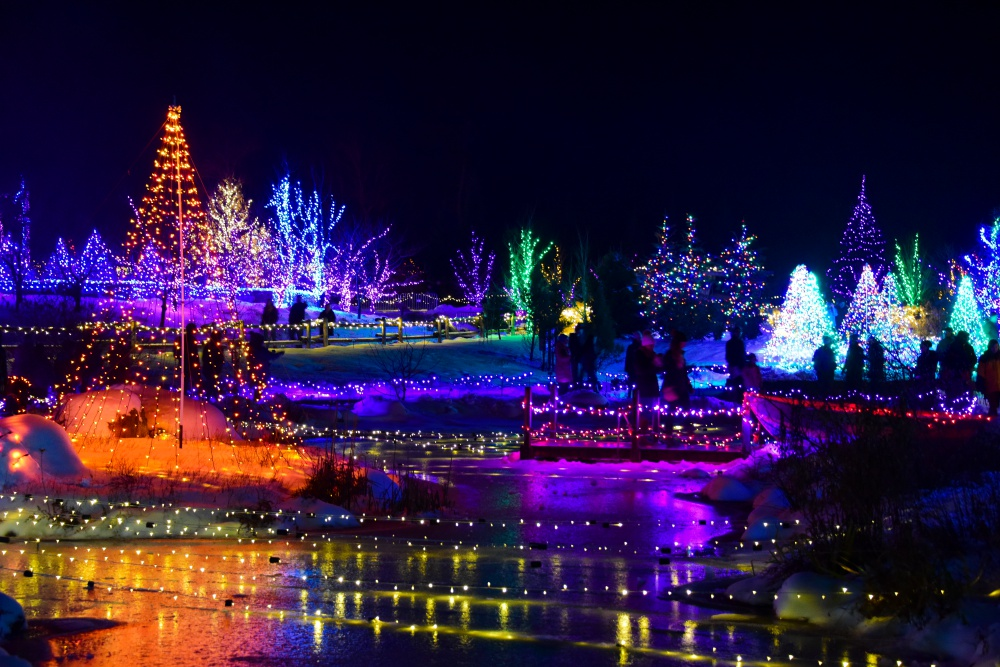 Oregon Gardens Christmas.Tree Lighting Portland Oregon