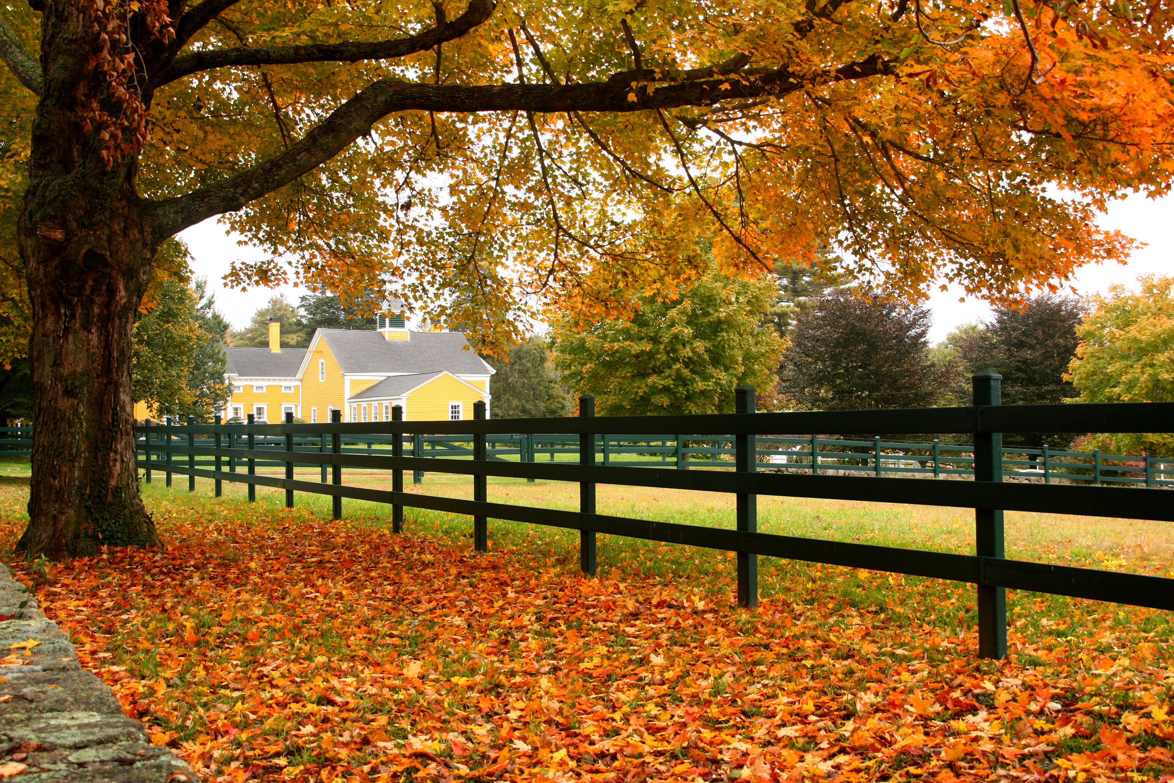 Fall In Vermont Wallpaper Eastover Farm New England Today