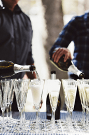 Sparkling Champagne Toast!