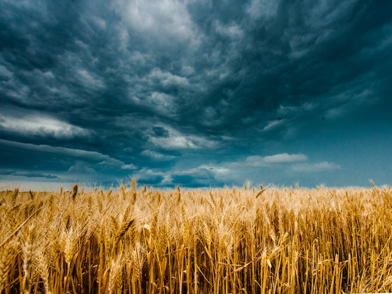 Farmers Union Encouraged by First Step to Address Climate Crisis