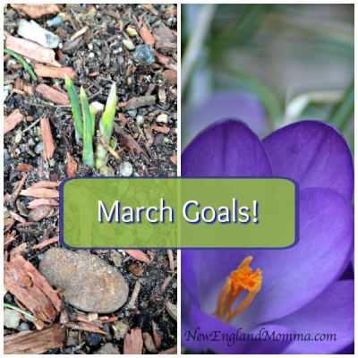 March Goals!