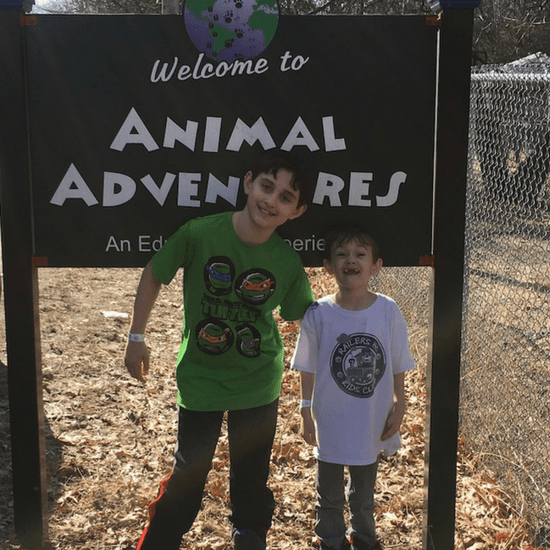 Animal Adventures is open to the public. Come pat a chinchilla or a lizard! Located in Bolton, MA.