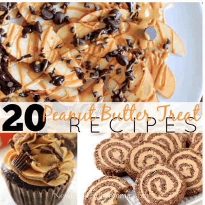 20 Peanut Butter Treat Recipes for the Peanut Butter Lover