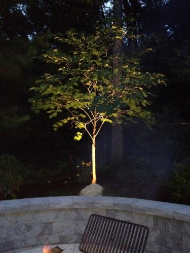 landscape lighting in bellingham