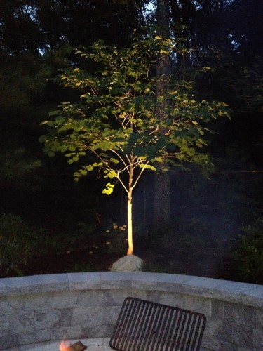 landscape lighting in Bellingham MA