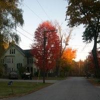 New England's Foliage, October 2010