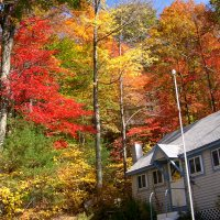 Foliage Season Winds Down In New Hampshire