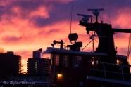 Sunset on Staten Island