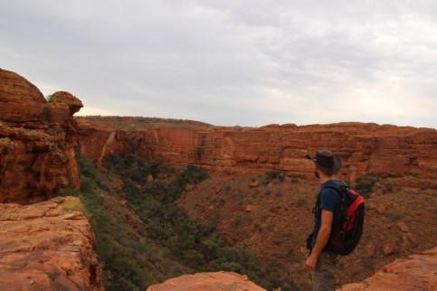 Tom admire la vue de Kings Canyon