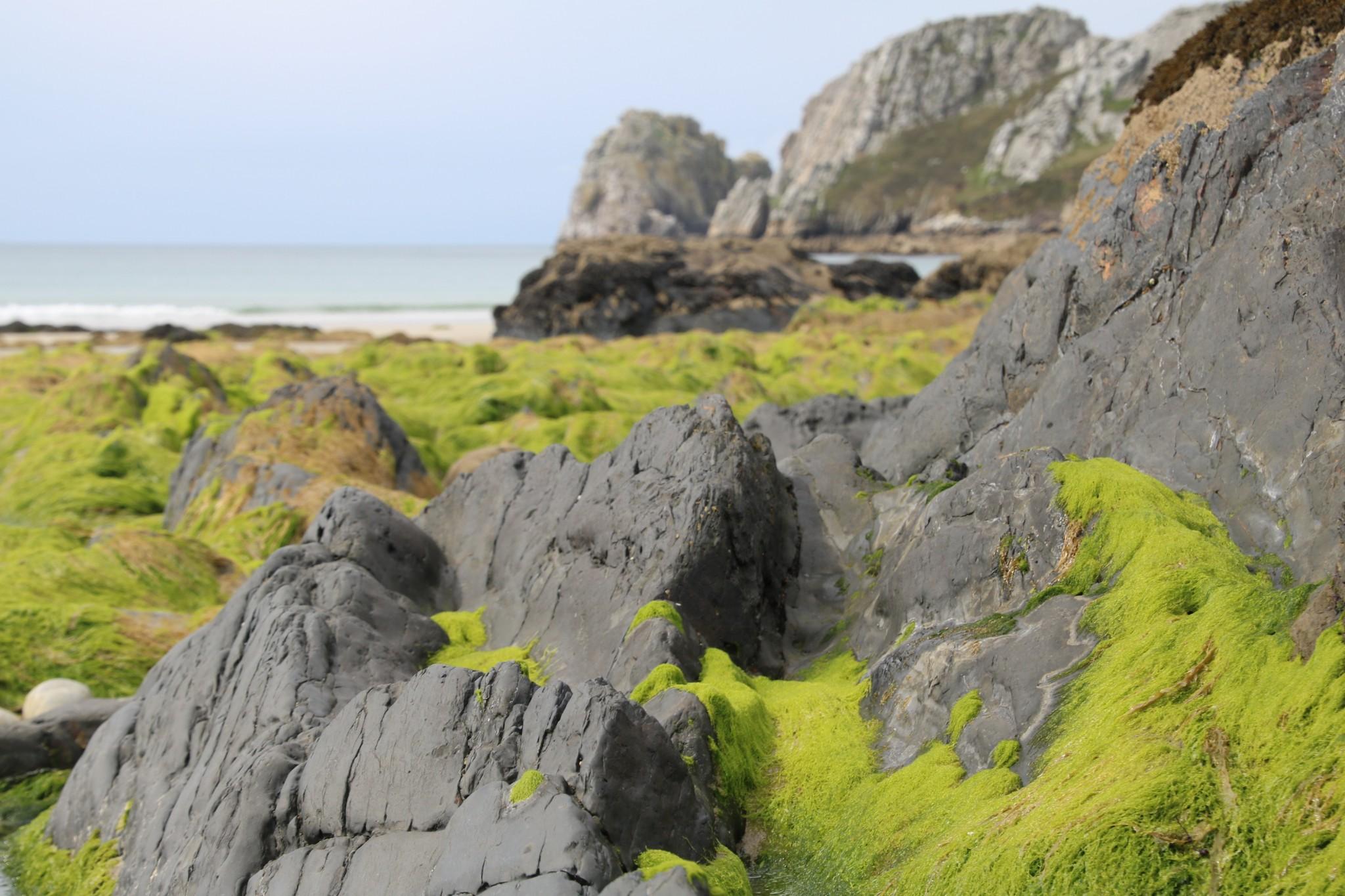La Presqu'île de Crozon