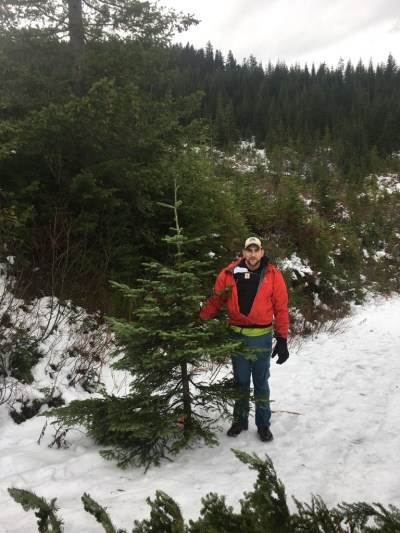 Cutting a Christmas tree