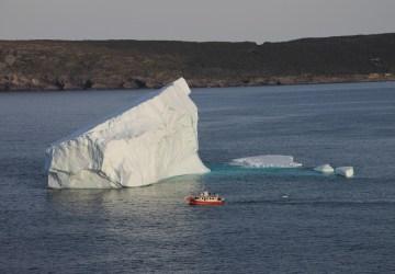 5 Amazing Newfoundland Boat Tours