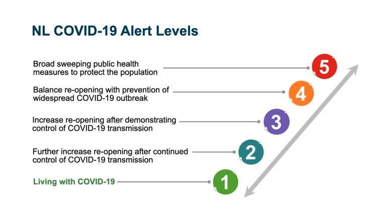 Alert levels brought Newfoundland COVID-19 success