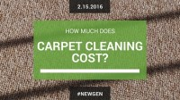 how much does it cost to have carpets cleaned - Home The ...