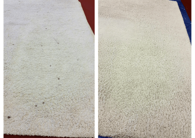 In Office Rug Cleaning