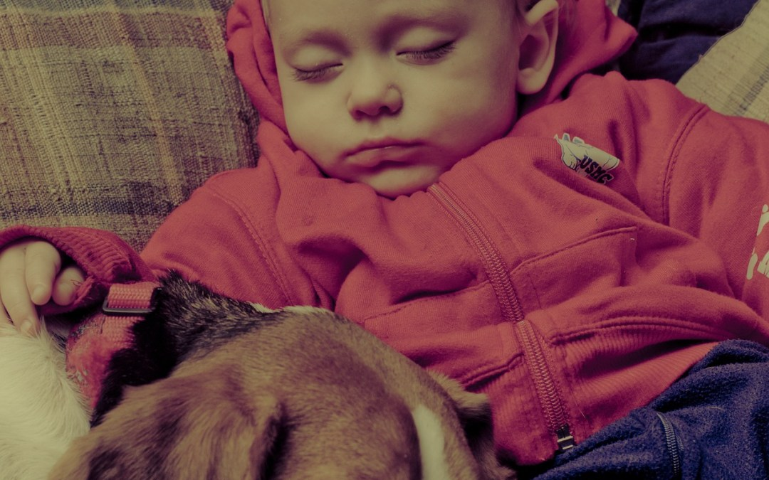 How To Clean Your Home In A Baby And Pet-Friendly Way