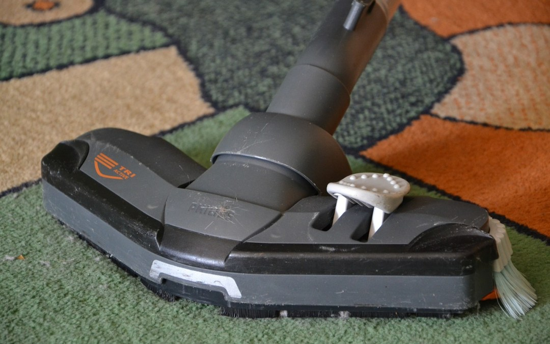 How Often Should I Clean My Carpets? A Guide To Regular Carpet Maintenance