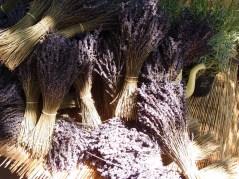 Lavender in bundles at the Arles market
