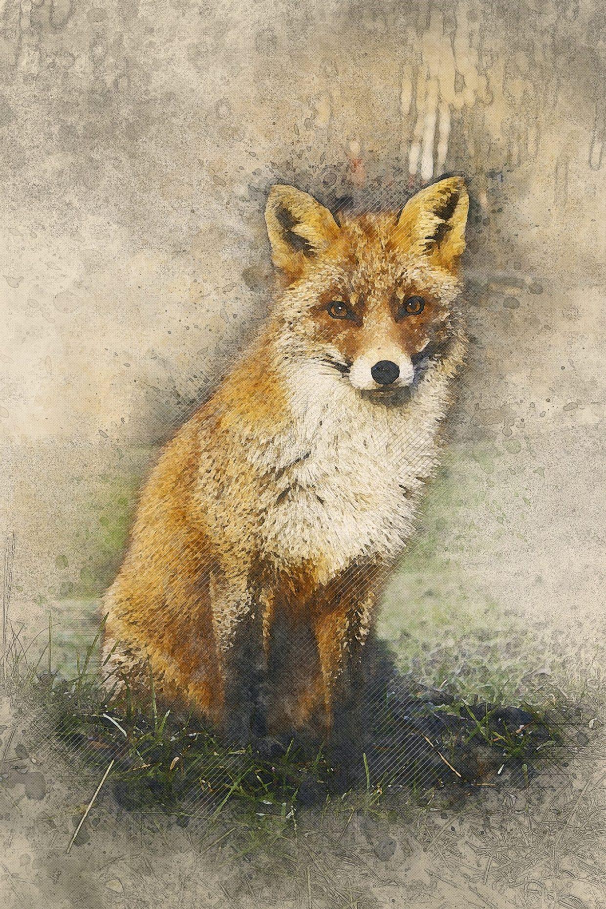 Mr. Fox Felt Really Bad - Saint Kieran (Ciaran) of Saighir song image