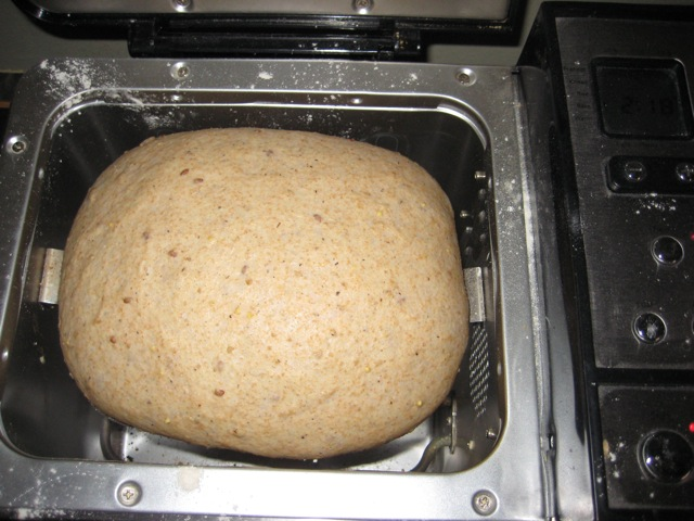 breaddoughrisen