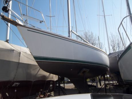 Catalina Tall Rig Boats For Sale YachtWorld