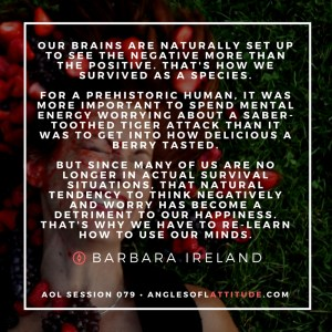 barbara ireland