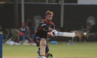 IPL 2021: Fans Go Gaga After Seeing Glenn Maxwell In RCB Colours