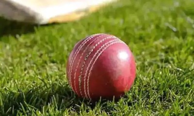 Former India Cricketer Surinder Amarnath Applies For BCCIs Junior Selector Job