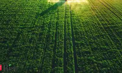 Agritech Challenge 2021 to benefit smallholder farmers across Asia and Africa