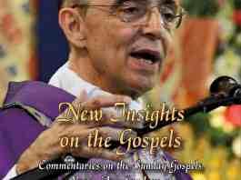 New Insights on the Gospels - Volume 1