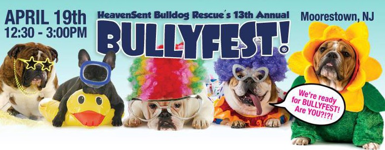 heaven sent bulldog rescue heavensent bulldog rescue s 13th annual bullyfest april 8060