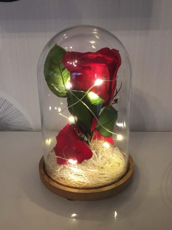 rose éternelle sous cloche illuminée