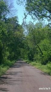 East TX road