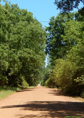 Road from Texarkana to Paris