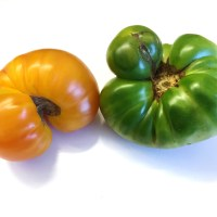 The Ugly Fruit and Vegetable Campaign