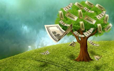 Our Tree Appraisal Services Help Determine Your Tree's Value Featured Image