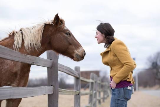 horse kath 2