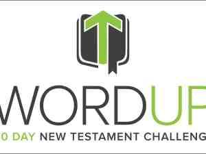 wordup-300x225