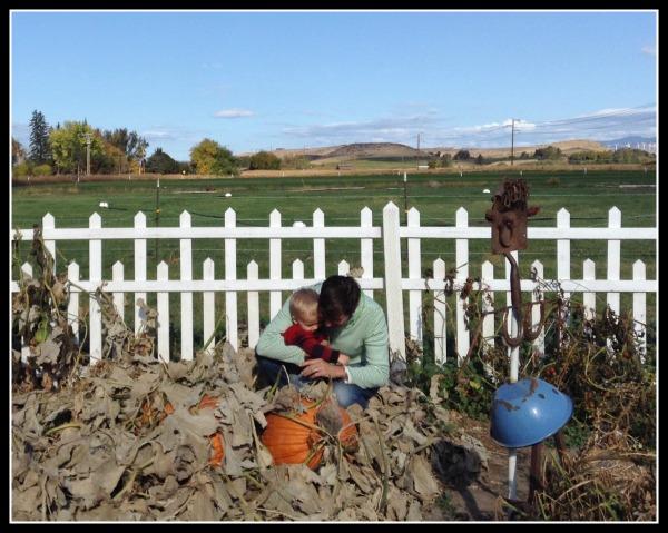 jonah farm pumpkins