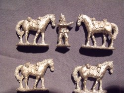 Natal Police horse holder & 4 horses