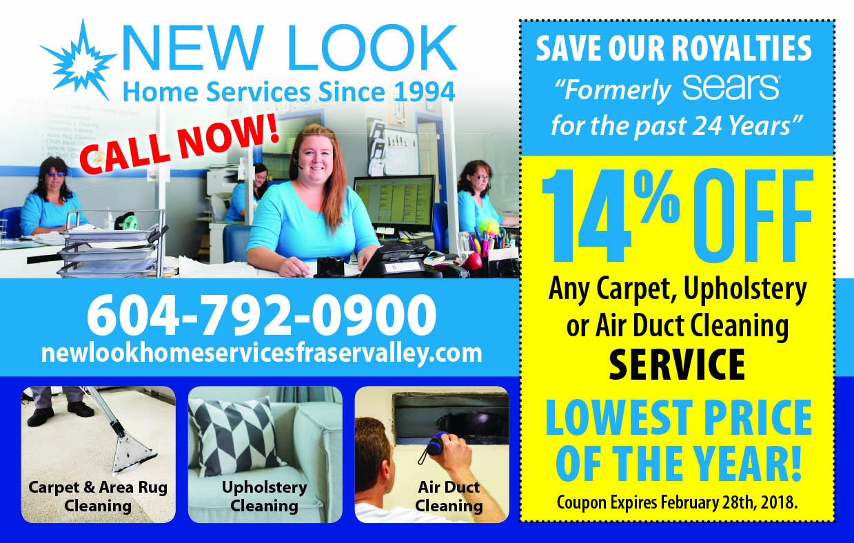 sears sofa cleaning coupon sleepers sale carpet langley vidalondon