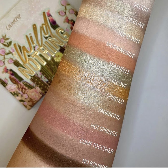 ColourPop Wild Nothing palette swatches on light skin